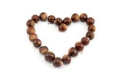 Chestnut heart shape Stock Photo