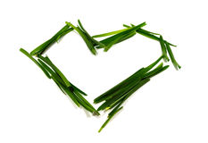 Heart shape made of green grass. On a white bkg Royalty Free Stock Photography
