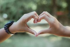 Heart shape made with hands of female student, Love symbol conce royalty free stock images