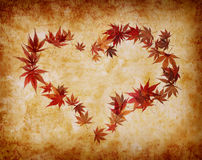 Heart shape made by leaves Stock Photo