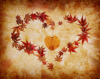 Heart shape made by leaves Stock Image