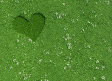 Heart shape made of mowed grass and flowers stock image