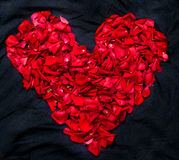 Heart shape made out of rose petals Stock Photos