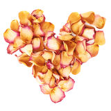 Heart shape made of pink rose petals as a romantic composition over white background Royalty Free Stock Photo