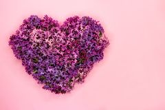 Heart shape made of purple lilac flowers on pastel pink background. Love symbol. Copy space. Top view. Summer wedding concept royalty free stock image