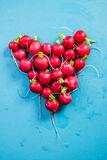 Heart shape made of radish on blue board. Copy space Royalty Free Stock Images