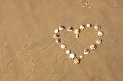 Heart shape made from sea shells on sandy beach. room for text. Royalty Free Stock Photos