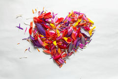 Heart shape from  petals Royalty Free Stock Photo