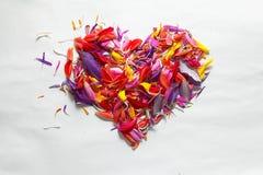 Heart shape from  petals Royalty Free Stock Photo