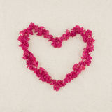 Heart shape pink crape myrtle petals. Wreath with copy space royalty free stock photos