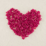 Heart shape pink crape myrtle petals. Wreath with copy space stock photo