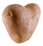 Heart shape potato, close up, isolated Stock Images