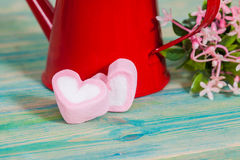 Heart shape with red watering can.Still life Royalty Free Stock Image