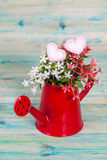 Heart shape with red watering can.Still life Royalty Free Stock Photos