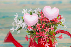 Heart shape with red watering can.Still life. Of love Royalty Free Stock Image