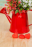 Heart shape with red watering can.Still life. Of love Stock Photos