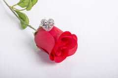 Heart Shape Ring On A Red Rose Stock Image