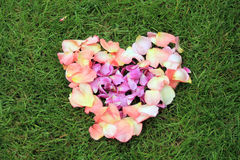Heart shape from rose petals against grass background. Stock Photos