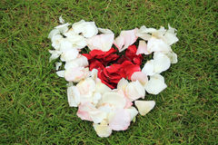 Heart shape from rose petals against grass background. Royalty Free Stock Images