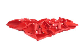 Heart shape rose petals composition Royalty Free Stock Photography