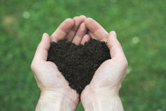 Heart shape soil. Man's hands ho0lds heart shape soil Royalty Free Stock Images