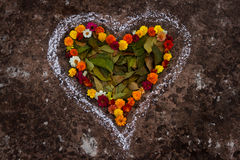 Heart Shape By Spring Flower and Leaves Royalty Free Stock Photography
