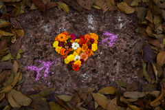 Heart Shape By Spring Flower and Leaves Stock Photography
