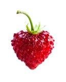 Heart shape strawberry. On white background Stock Image