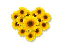 Heart shape with sunflowers stock photo