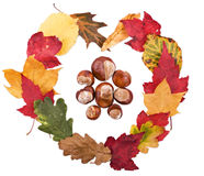Heart shape symbol made from Autumn leaves Stock Photo