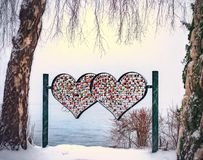 Heart Shape on Tree stock images