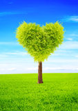 Heart shape tree Royalty Free Stock Images