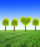 Heart shape tree on green field Royalty Free Stock Image