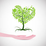 Heart Shaped Abstract Green Tree royalty free illustration