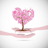Heart Shaped Abstract Pink Tree in Human Hands Stock Photos