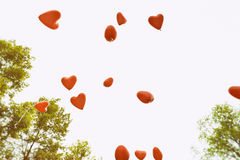 Heart shaped balloons over white background Stock Photography