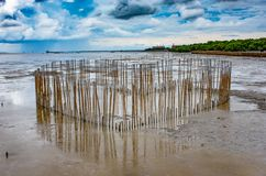 Heart shaped bamboo that is in the sea at Bang Poo, Samut Prakan royalty free stock photos