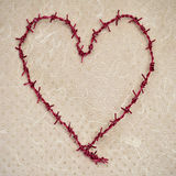 Heart-shaped barbed wire Royalty Free Stock Photography