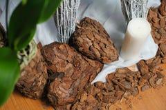 Heart shaped bark decoration Royalty Free Stock Photo