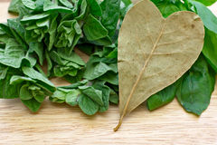 Heart shaped bay leaf. Over oregano and basil stock image
