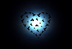 Heart shaped birds Royalty Free Stock Photo