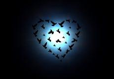 Heart shaped birds. Birds in heart shape flight  in air Royalty Free Stock Photo