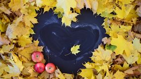 Heart shaped frame in foliage. Heart shaped blackboard frame in foliage. Sunny autumn day stock video