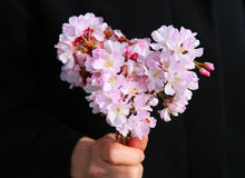 Heart-shaped bouquet Royalty Free Stock Photo