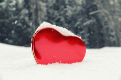 Heart Shaped Box in a Snowy Forest Stock Image