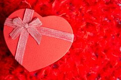 Heart shaped boxed gift, placed on red feathers background royalty free stock photo