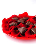 Heart-Shaped Candies with Rose Petals Stock Photography