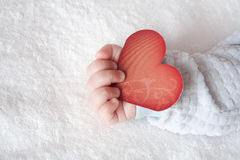 Heart shaped card in baby hand Stock Photography