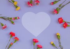Heart shaped carnation flowers frame stock photos