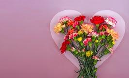 Heart shaped carnation flowers frame stock image
